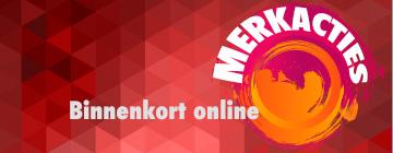 merk-acties_arie-molenaar-motors_02