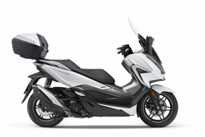 2021 NSS 350 wit